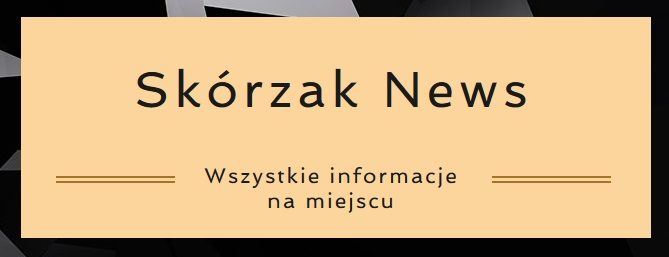 SN logo.jpeg
