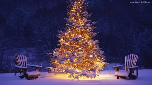 świąteczne życzenia.jpeg