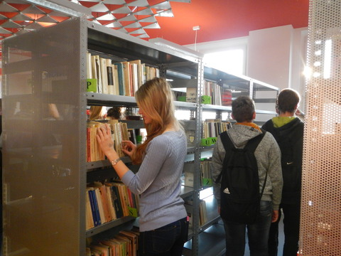 biblioteka 2 (1).jpeg
